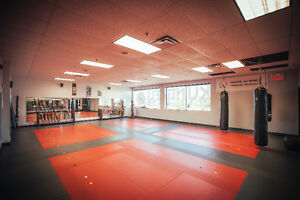 Martial Arts Instructor - No Experience Necessary! West Island Greater Montréal image 1