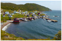 Trinity Bay Vacation Home in New Bonaventure for rent