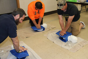 Public First Aid, CPR & AED Course Windsor Region Ontario image 2