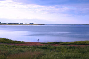Stunning Water View, 1 Acre Lot Overlooking the Darnley Basin
