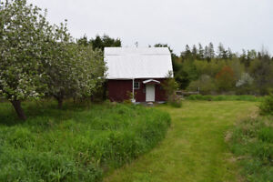 Great Site for a Country Home at a GREAT NEW PRICE