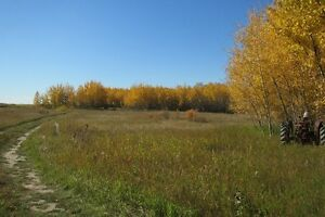 Rabbit Creek Acreage