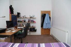 1 double room in 3-bedroom flat with garden, cute cat & big living-room, Arnos Grove/New Southgate