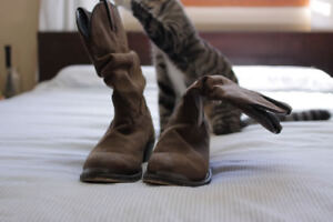 Slouchy Cow-Girl Boots