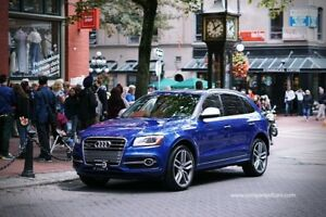 2015 Audi SQ5 Technik