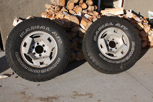 Tires on rims - set of two