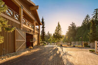 An exquisite world-class equestrian facility