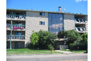 Fully renovated condo in Millwoods, Edmonton