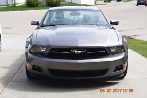 2010 Ford Mustang Premium Package Coupe (2 door)