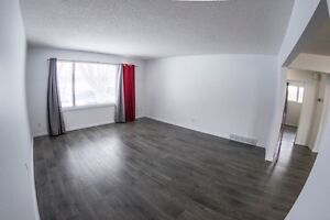 One bedroom Bachelor.  LOCATION!  BRIGHT!