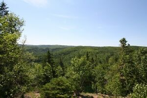 144 Acres near Poley Mountain