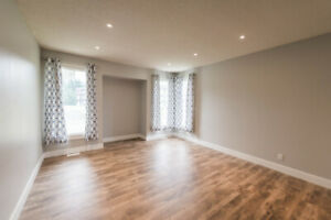 Newly Renovated house for Rent