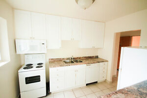 Jan 1st - Renovated Large One Bedroom Apartment London Ontario image 5