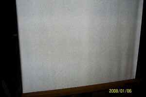 projection screen Cambridge Kitchener Area image 1