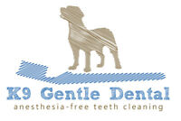 Sedation-free canine teeth cleaning assistant