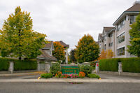 Shaughnessy Green