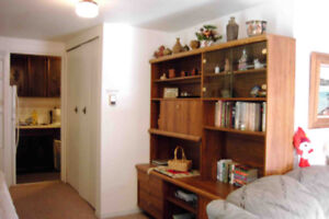 Large, Ground level Basement Bachelor Suite for Rent (Upper Lons