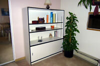 Shelving Unit with storage space