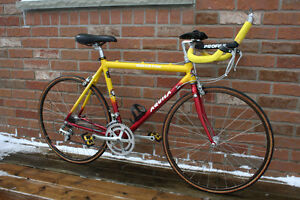 1996 Aquila Triathlon Racing Bicycle in Amazing Shape.