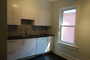 Large 2 bedroom apartment in Centertown $1695