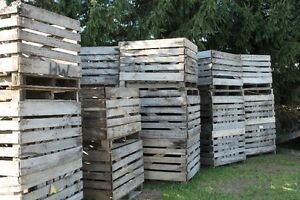 Wooden Produce Bins