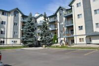 ONE BED ONE BATH CONDO 50 STREET AND 25 AVE 100% REMODELLED