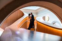 Creative Engagement & Wedding Photography