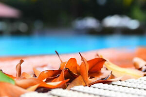 Best Swimming Pool Installation & Construction Services