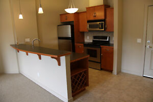 BEAUTIFUL 2-bedroom Lower Mt.Royal CONDO steps to 17th Ave