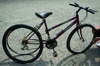 Attractive Mountain Bike, used once - Mountan Tour Venture