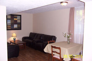 Basement 2 bedroom apartment in Owen Sound newer home