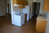 INNISFAIL, Completely Renovated 2 Bedroom