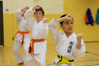 Karate Lessons - Kids Session $50 / Teen & Adults $50 per