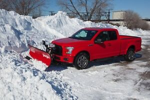 WANTED - SOMEONE TO PLOW MY DRIVEWAY - snow plow removal SNOLOW Peterborough Peterborough Area image 1