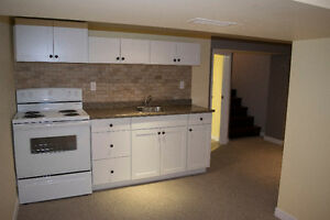 Newly renovated apartment for rent in downtown Oshawa