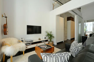 Downtown Contemporary 1BR Furnished