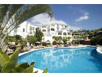 Tenerife Holiday Aparment, Sunset Harbour Club, Adeje Tenerife 1 Bedroom Apartment, Sleeps 4