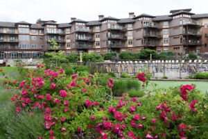 2bed/2bath, fully furnished condo at The Cove Lakeside Resort!