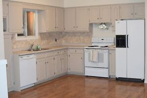Newly Updated Semi Detached Raised Bungalow in St Marys, ON Stratford Kitchener Area image 4