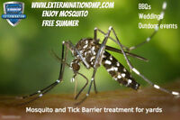 Mosquito Barrier - End of Season Special.