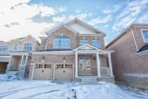 Yonge/ Bloomington 4 bedrooms house for rent