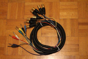 """10 Ft 8-Channel 1/4"""" TRS Male to XLR Male Audio Snake"""