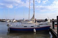 Tanzer 7.5 for sail