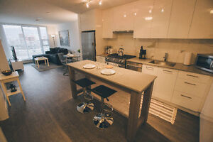 Furnished Penthouse with Huge Balcony, Brand New, Short Term OK!