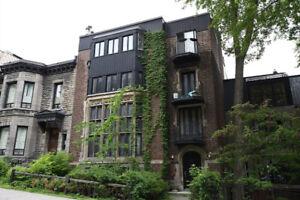 Apartment Mcgill Ghetto | Appartements et condos à vendre ...