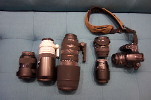Sony -A-Mount Lenses