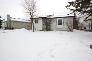 2 Bedroom Basement Suite available
