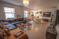 Fully Furnished 1300sqf condo for rent downtown