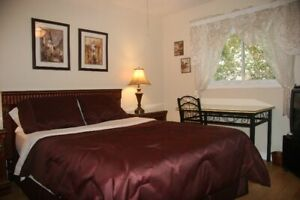 Central East Hill - Available March 30, at Belle Vie Guest House