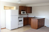 Bright and beautiful 1 Bedroom walkout basement suite